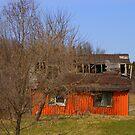 The Little Red barn................. by Larry Llewellyn