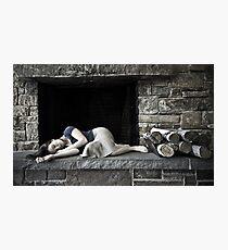 Resourcefulness Photographic Print