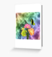 Painted Daisies and Butterlfies Greeting Card