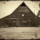 Barn by Cricket Jones