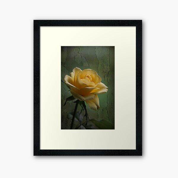 Shining Bright Framed Art Print