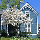 Spring at a Victorian House by raindancerwoman
