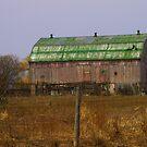 A Green Barn... a rare find! by Larry Llewellyn
