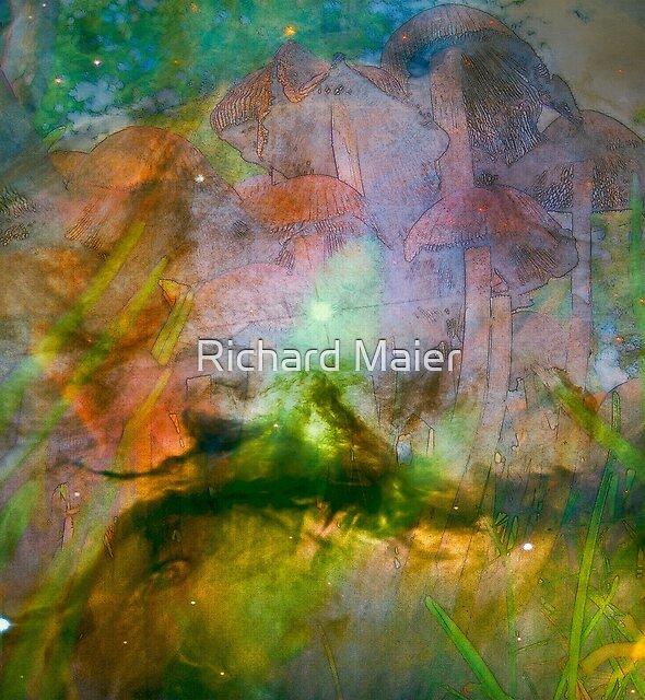 Cosmic Mushrooms 2 by Richard Maier
