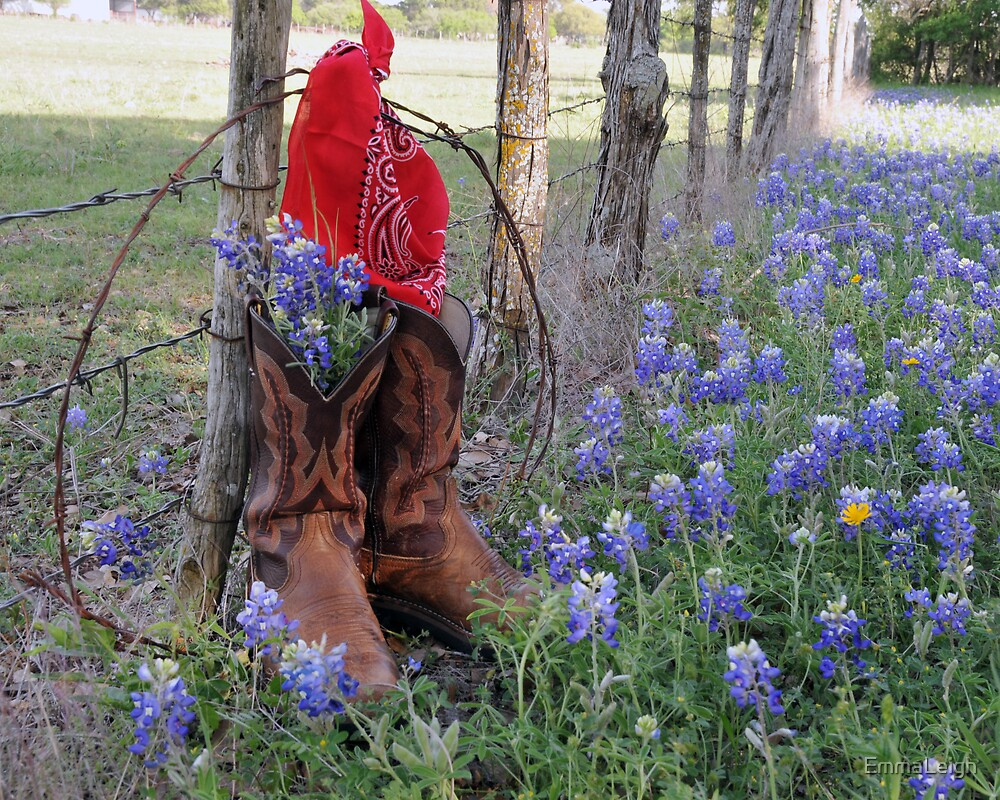 Quot Boots N Bluebonnets Quot By Emmaleigh Redbubble