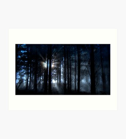 Forest fog. Art Print