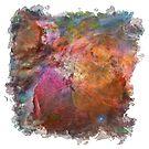 Cosmic Mushrooms 1 (framed version) by Richard Maier