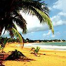 Playa Azul 2- Puerto Rico by Mylissa Artreche