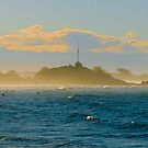 Sumner Sea-spray by John Brotheridge