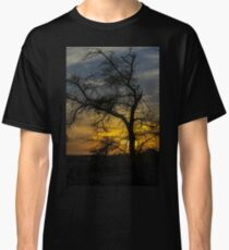 Dry parched tree in a desert landscape at sunset Classic T-Shirt