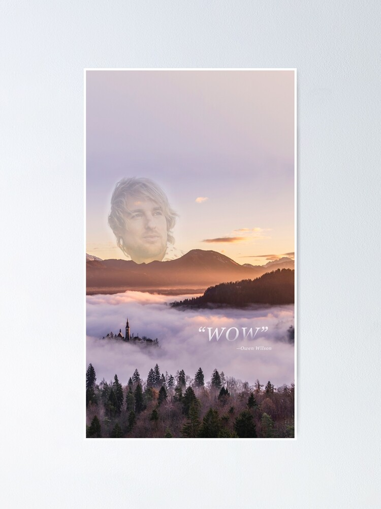 Alternate view of WOW - Owen Wilson Poster