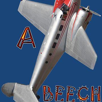 Life's A Beech - Beechcraft D18 VH-BHS banked by muz2142