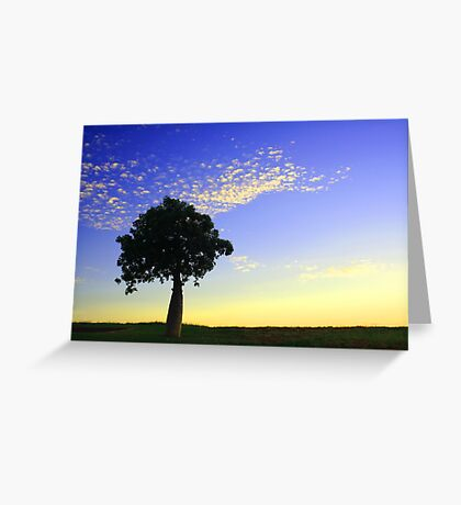 Boab at Sunrise Greeting Card