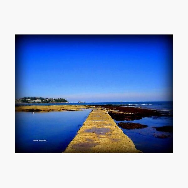 Path to Sea Photographic Print