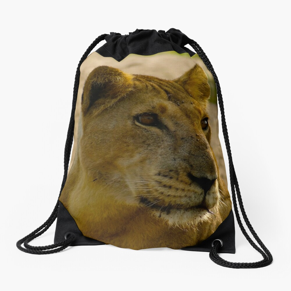 pregnant lioness relaxed Drawstring Bag