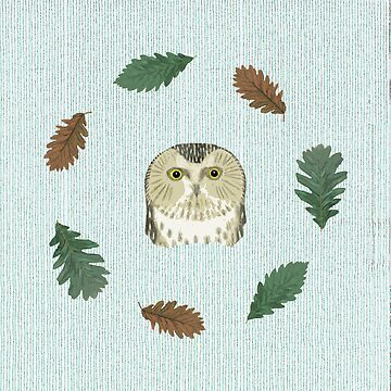 The owl and the oak by anni103