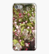 Spring Blossoms #3 iPhone Case/Skin