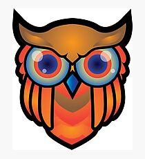 cool owls and cool design print  Photographic Print