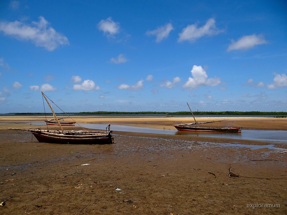 Lamu Island - three wooden fishing dhows at low tide by exploramum