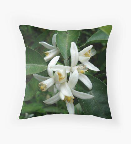 Orange Blossom Special Throw Pillow
