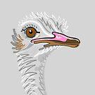 Ostrich Portrait On Grey by Adam Regester