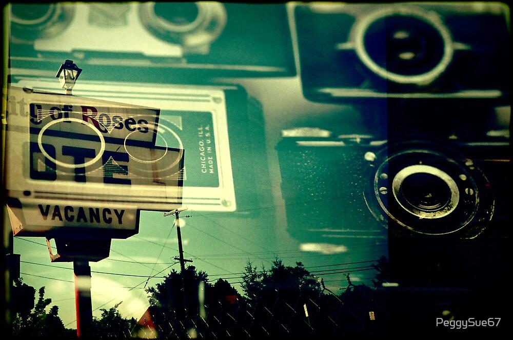 Camera Vacancy by PeggySue67