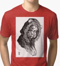 Sad Cat Tri-blend T-Shirt