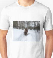 Scottish Highland Cattle Calf 1705 Unisex T-Shirt
