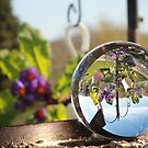 Garden through an orb by missmoneypenny