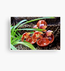 Rust And Relaxation Canvas Print
