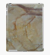 Natural Composition iPad Case/Skin