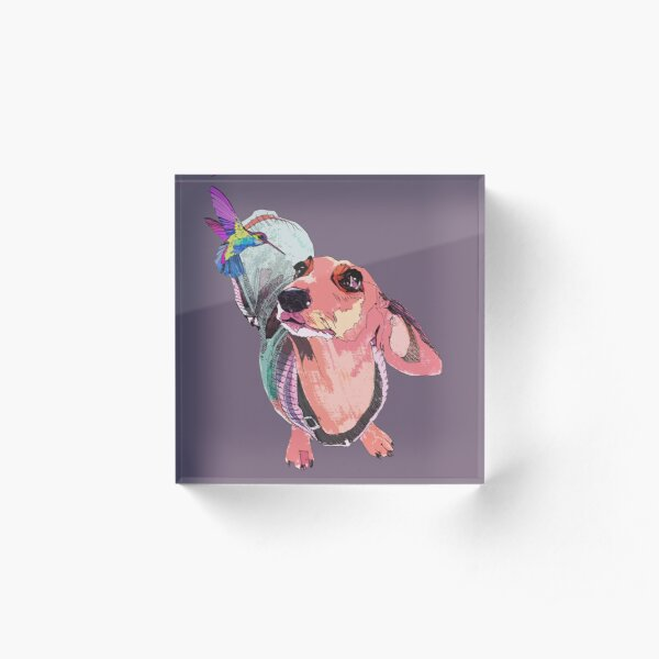 Handsome Dachshund and beautiful Hummingbird are falling in love.  Acrylic Block