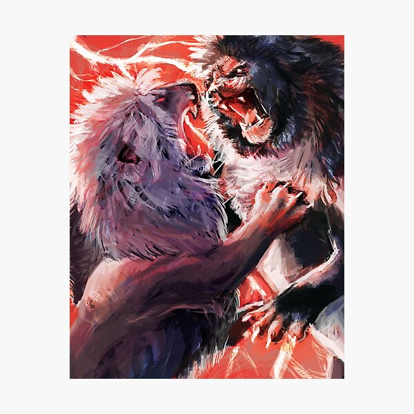 Fighting Lions Photographic Print
