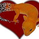 Leopard Gecko Tangerine Tornado Heart by OnlineGeckos
