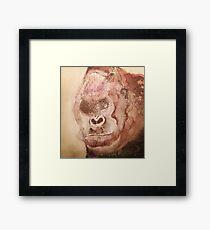 Angry Gorilla Framed Print