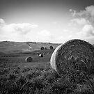 Hay Bale by Melinda Kerr