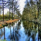 Reflections in the River by ienemien
