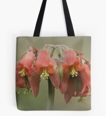 Cotyledon flower Tote Bag