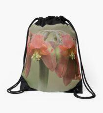 Cotyledon flower Drawstring Bag