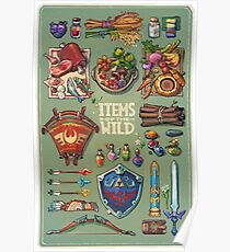 Items of the wild Poster