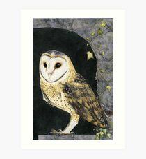 The Church Owl Art Print