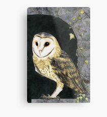 The Church Owl Metal Print