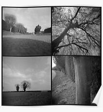 Village Trees Poster