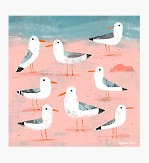 Seagulls on the Shore Photographic Print