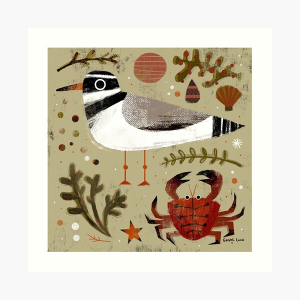 Plover and Crab Art Print
