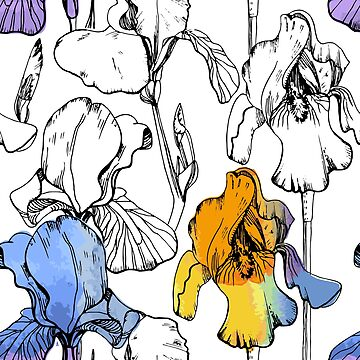 Irises with watercolor effects by mnimpres