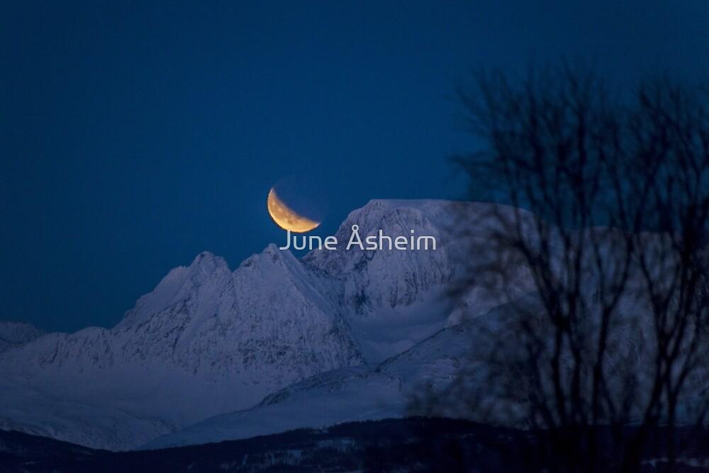 Supermoon and lunar eclipse by June Åsheim
