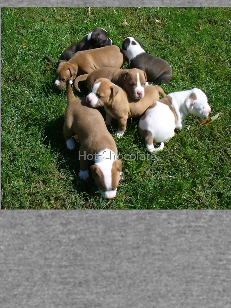Puppies Playing Outdoors by Hot-Chocolate