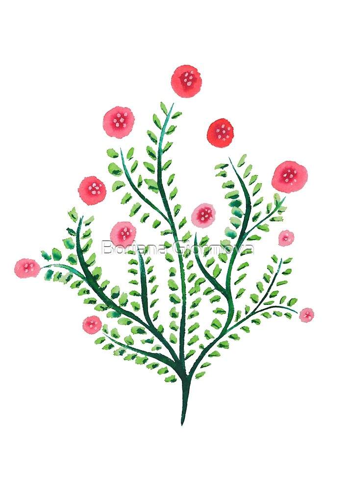 Spring Plant In Pink And Green by Boriana Giormova