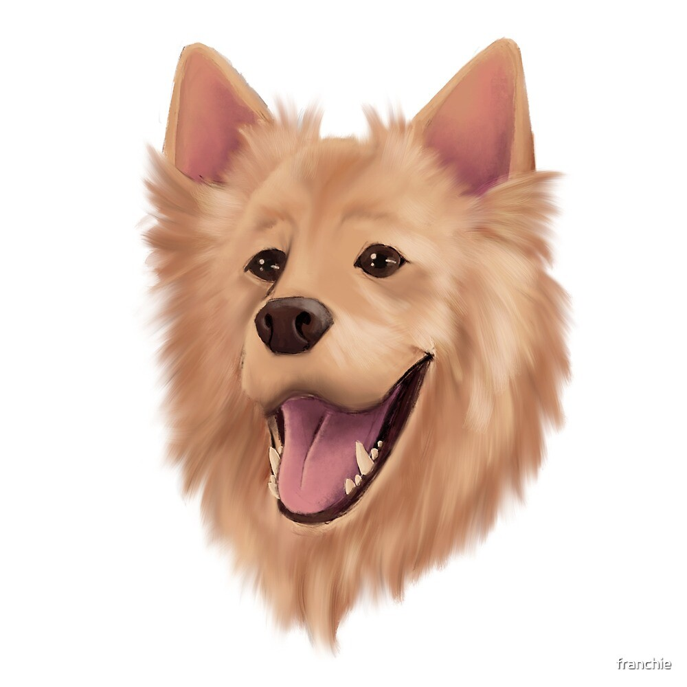 Lion Dog by franchie